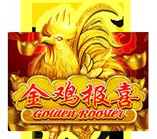 Golden Rooster