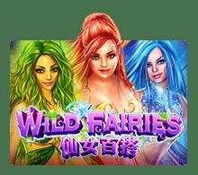 Slotxo-Wild-เกมสล็อต
