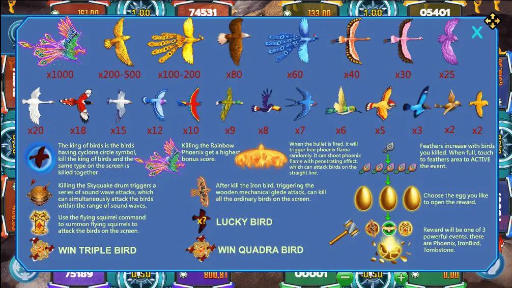 Bird Paradise - Flying Squirrels 3