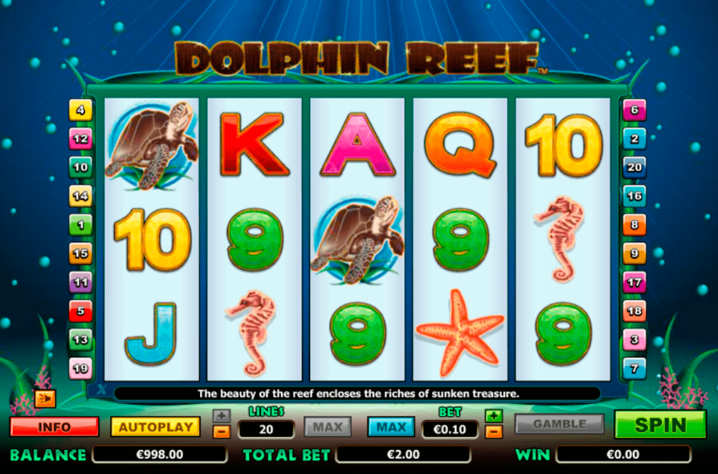 Dolphin Reef 1