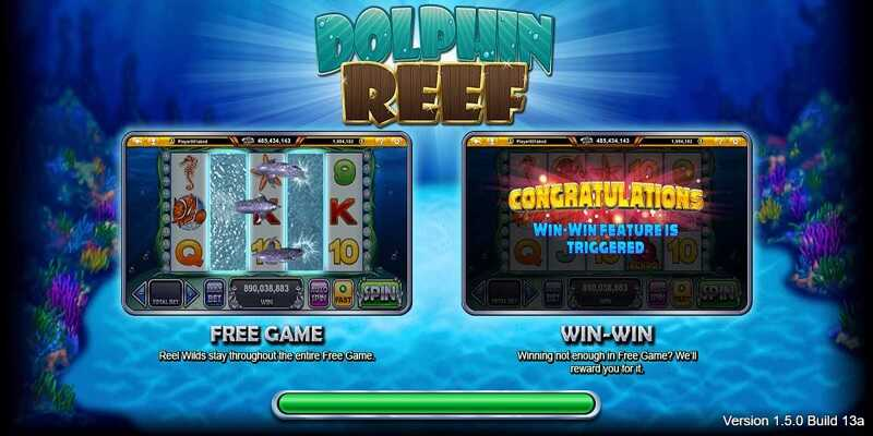 Dolphin Reef 3
