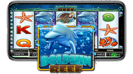 Dolphin Reef 5