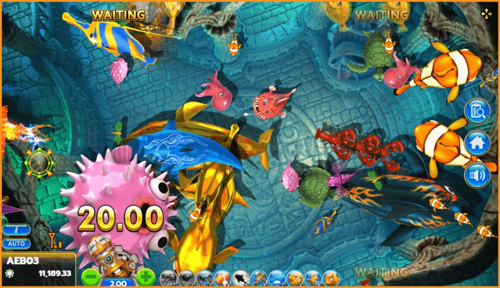 Fish hunter 2 Super EX Novice 4