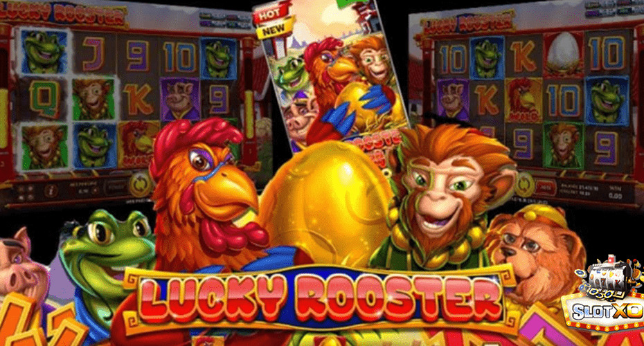 Lucky Rooster ปก3