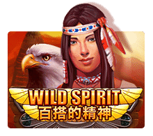 Wild Spirit ปก1